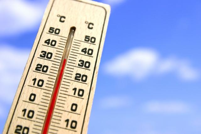 認知症 温度 気温 調節